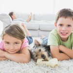 kids and dog dry carpet cleaning service Sydney from Green Clean Carpet Cleaning