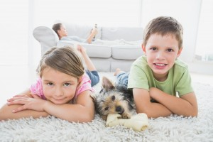 kids and dog dry residential carpet and rug cleaning service Sydney from Green Clean Carpet Cleaning