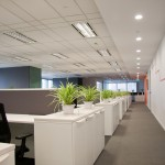 image of office for commercial carpet cleaning from Green Clean Carpet Cleaning
